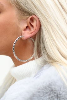 earings silver